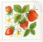 muhu maasikas